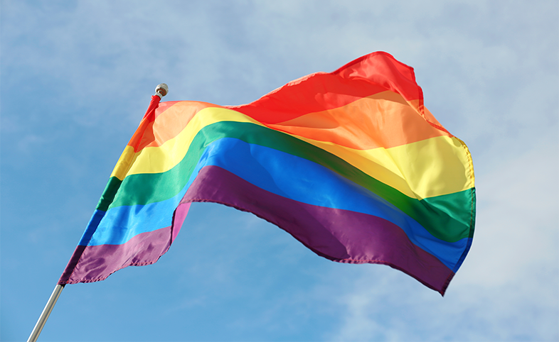 Lesbian, gay, bisexual and trans LGBT flag